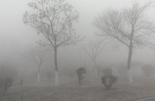 雾霾天应该怎锻炼