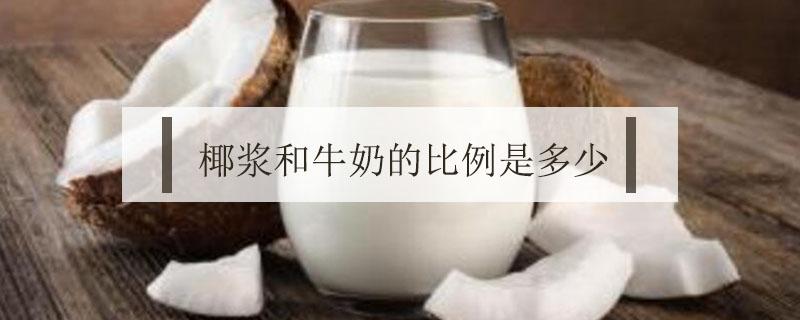 椰浆和牛奶比例是多少