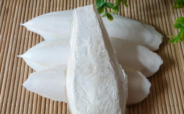 海螵蛸的营养价值有什么?海螵蛸的功效与作用有什么?(1)
