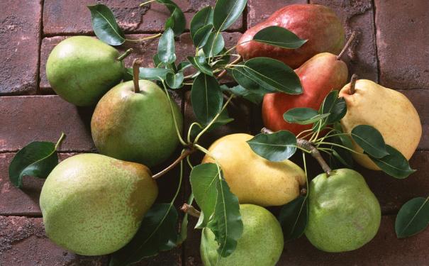 吃梨子都有哪些好处?关于梨子的食谱有哪些?(1)