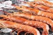 蛏子和海螺煮多长时间 蛏子和海螺哪个有营养